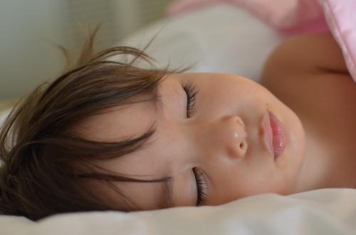 2015年 Zenoさんプータン寝顔
